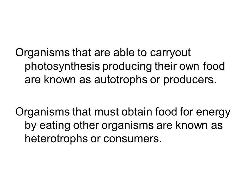 Organisms that are able to carryout photosynthesis producing their own food are known as autotrophs or producers.