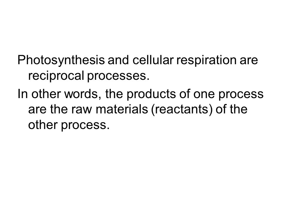 Photosynthesis and cellular respiration are reciprocal processes.