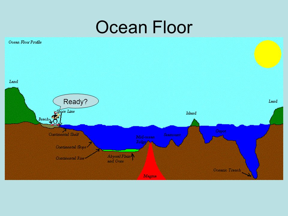 Diagram Of The Ocean Floor Labeled Residential Electrical Symbols