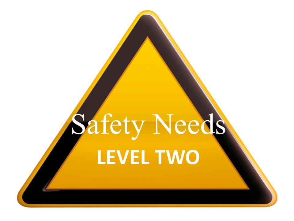 LEVEL TWO Safety Needs