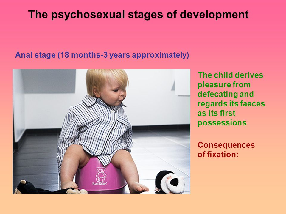 Anal stage (18 months-3 years approximately) The child derives pleasure from defecating and regards its faeces as its first possessions Consequences of fixation: The psychosexual stages of development