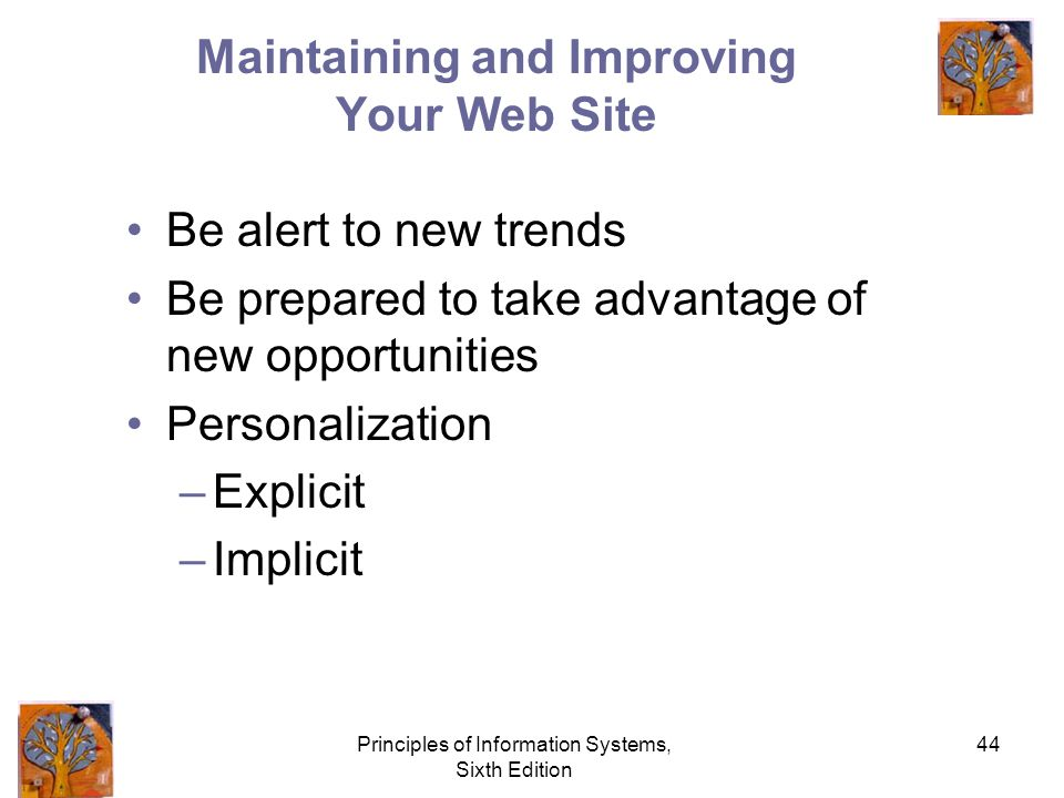Principles of Information Systems, Sixth Edition 44 Maintaining and Improving Your Web Site Be alert to new trends Be prepared to take advantage of new opportunities Personalization –Explicit –Implicit