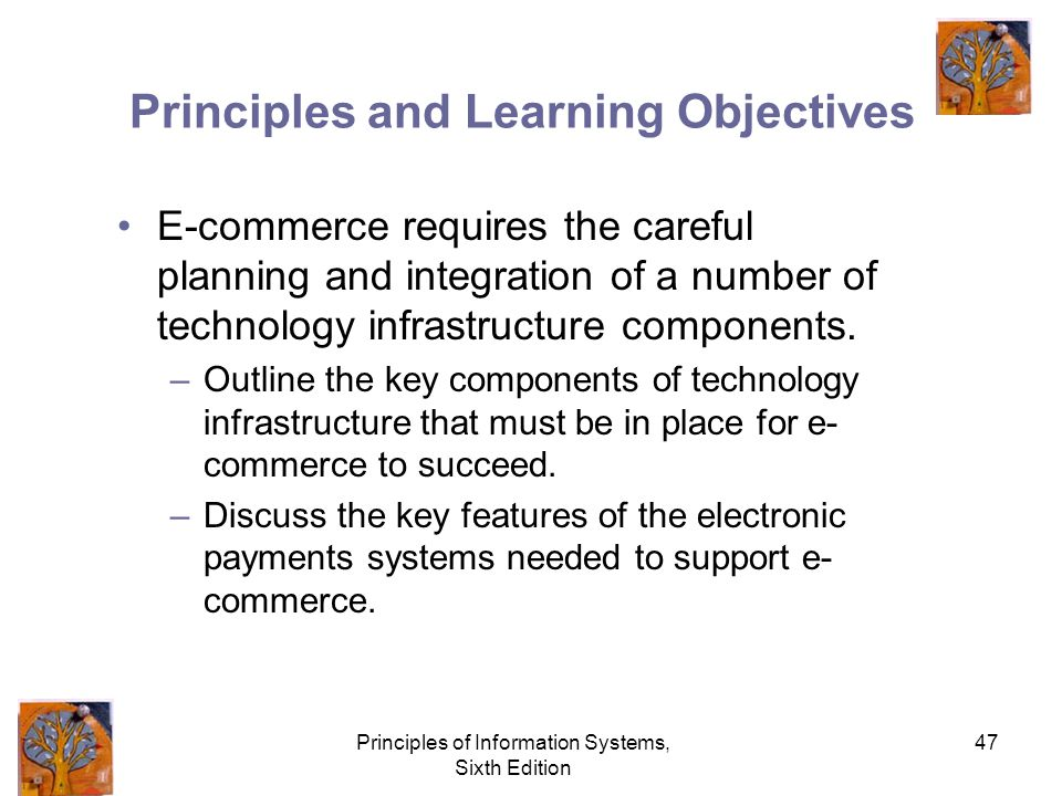 Principles of Information Systems, Sixth Edition 47 Principles and Learning Objectives E-commerce requires the careful planning and integration of a number of technology infrastructure components.