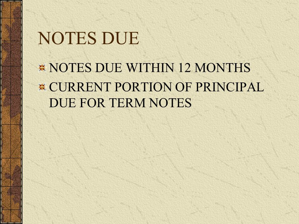 NOTES DUE NOTES DUE WITHIN 12 MONTHS CURRENT PORTION OF PRINCIPAL DUE FOR TERM NOTES
