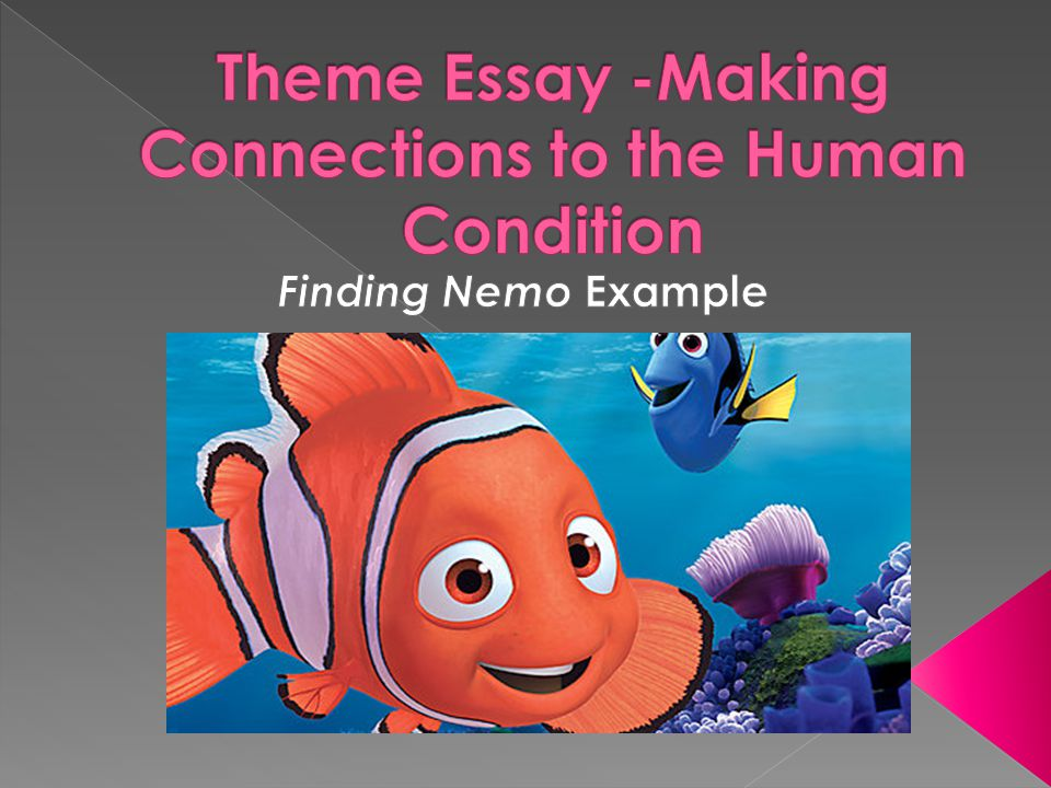 finding nemo writer