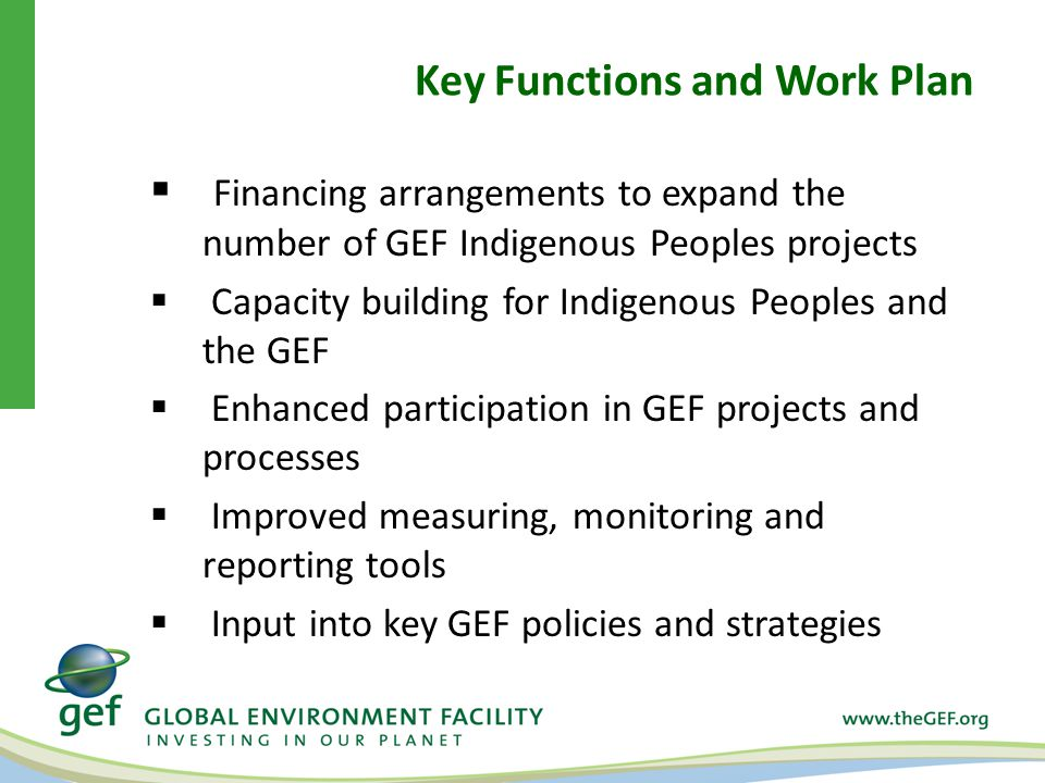 Key Functions and Work Plan  Financing arrangements to expand the number of GEF Indigenous Peoples projects  Capacity building for Indigenous Peoples and the GEF  Enhanced participation in GEF projects and processes  Improved measuring, monitoring and reporting tools  Input into key GEF policies and strategies