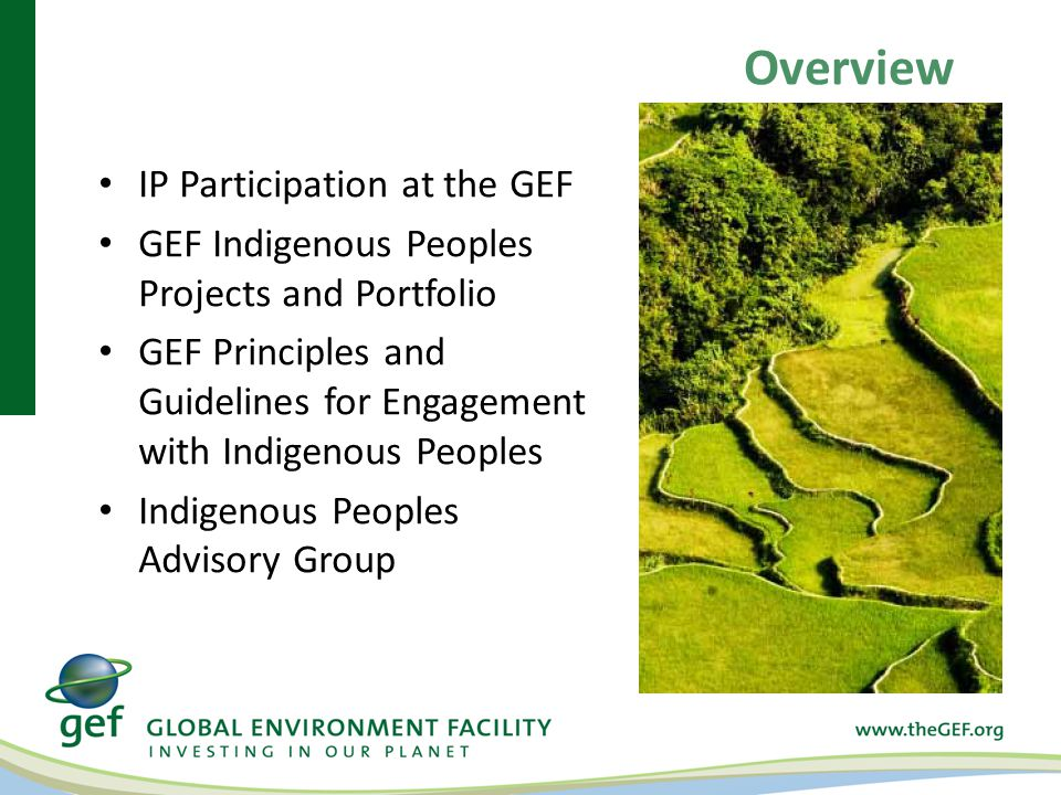Overview IP Participation at the GEF GEF Indigenous Peoples Projects and Portfolio GEF Principles and Guidelines for Engagement with Indigenous Peoples Indigenous Peoples Advisory Group