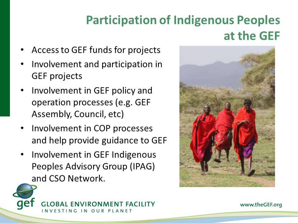 Participation of Indigenous Peoples at the GEF Access to GEF funds for projects Involvement and participation in GEF projects Involvement in GEF policy and operation processes (e.g.