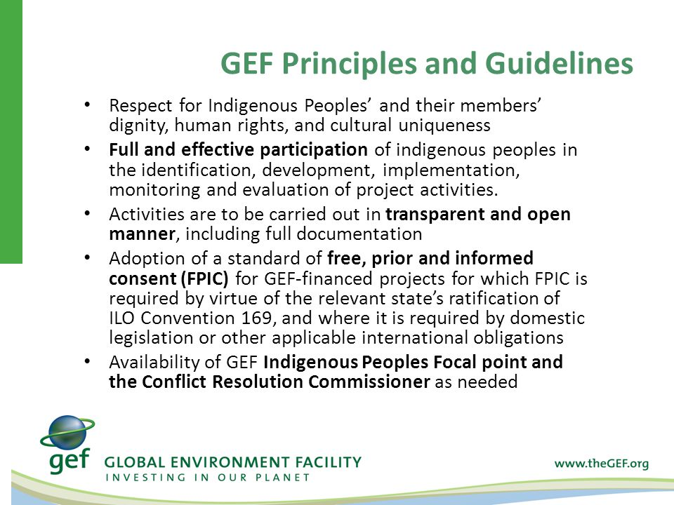 Respect for Indigenous Peoples' and their members' dignity, human rights, and cultural uniqueness Full and effective participation of indigenous peoples in the identification, development, implementation, monitoring and evaluation of project activities.