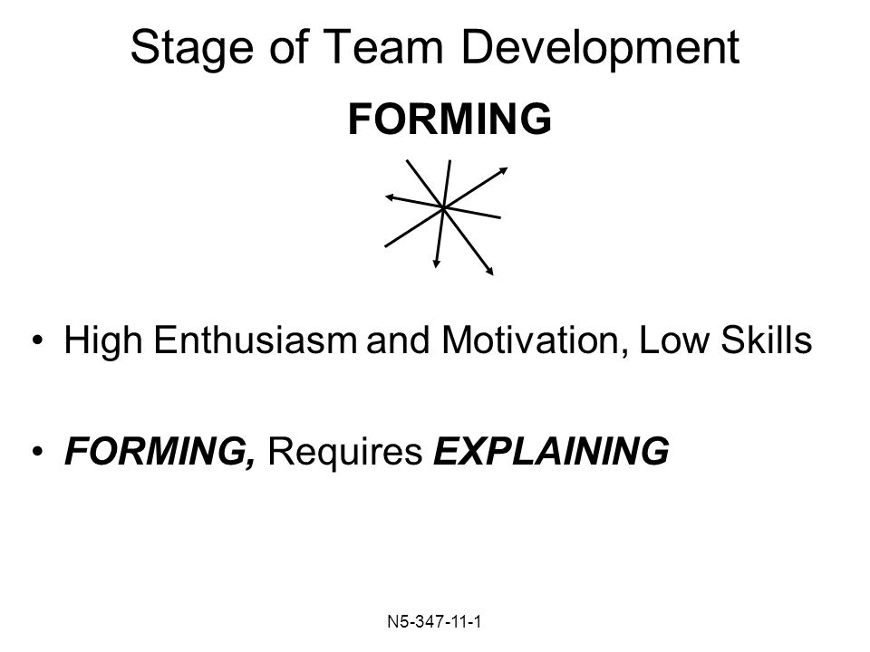 N Stage of Team Development High Enthusiasm and Motivation, Low Skills FORMING, Requires EXPLAINING FORMING