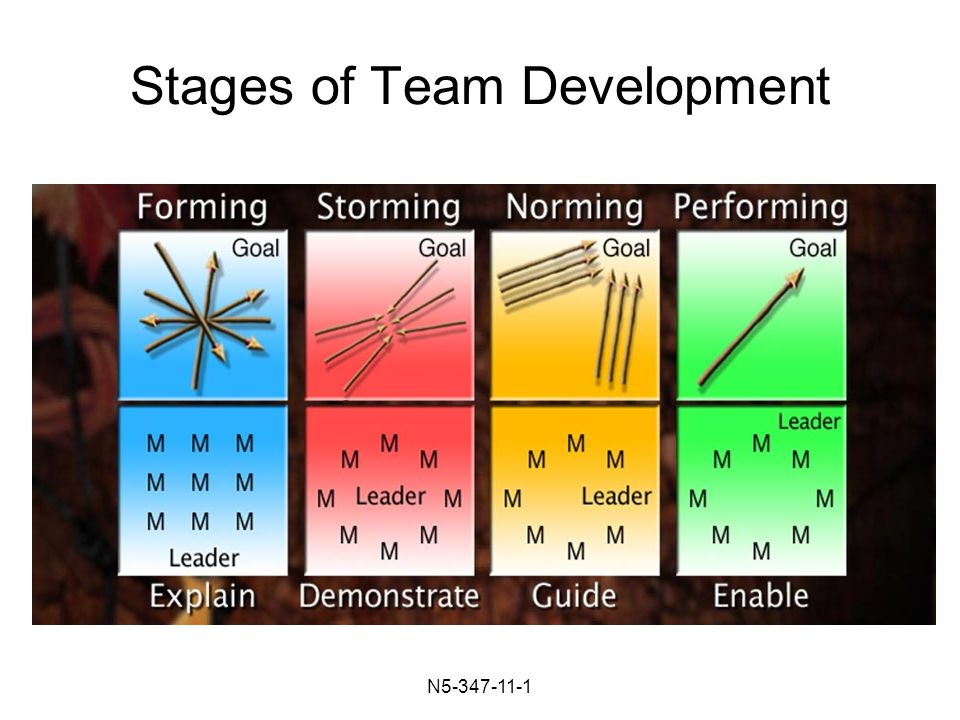 N Stages of Team Development