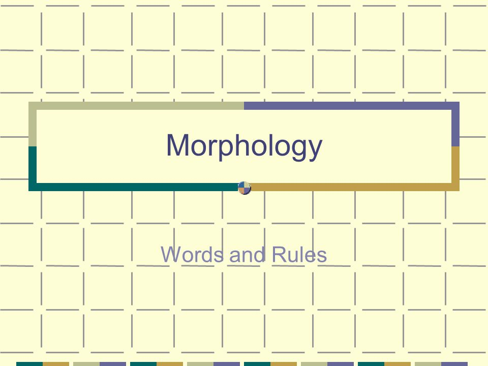 Morphology Words and Rules