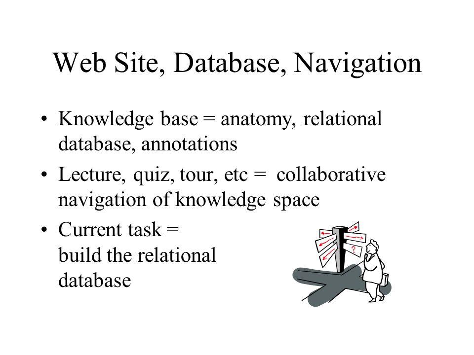 Web Site, Database, Navigation Knowledge base = anatomy, relational ...
