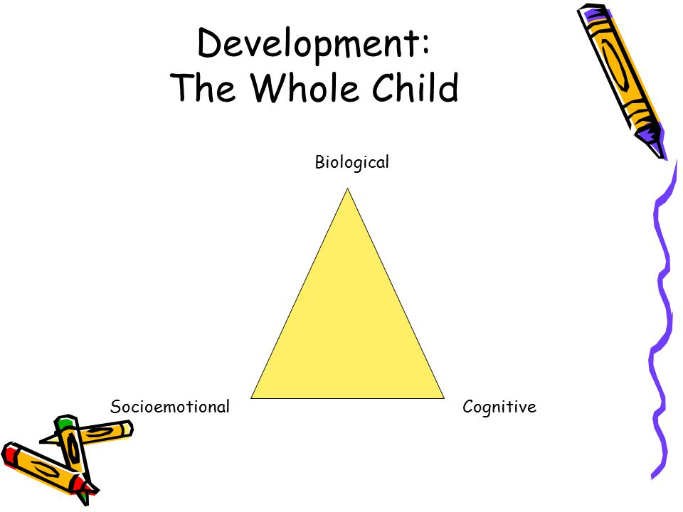 Development: The Whole Child Biological SocioemotionalCognitive