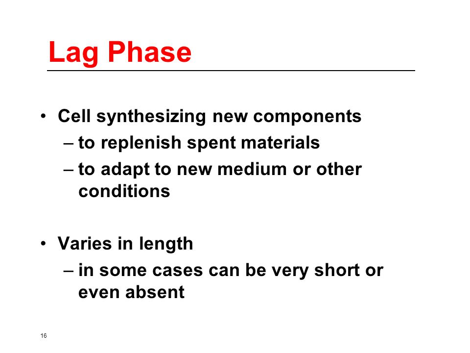 16 Lag Phase Cell synthesizing new components –to replenish spent materials –to adapt to new medium or other conditions Varies in length –in some cases can be very short or even absent