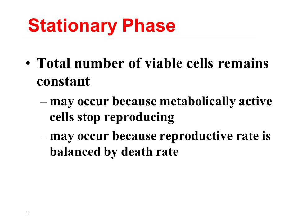 18 Stationary Phase Total number of viable cells remains constant –may occur because metabolically active cells stop reproducing –may occur because reproductive rate is balanced by death rate