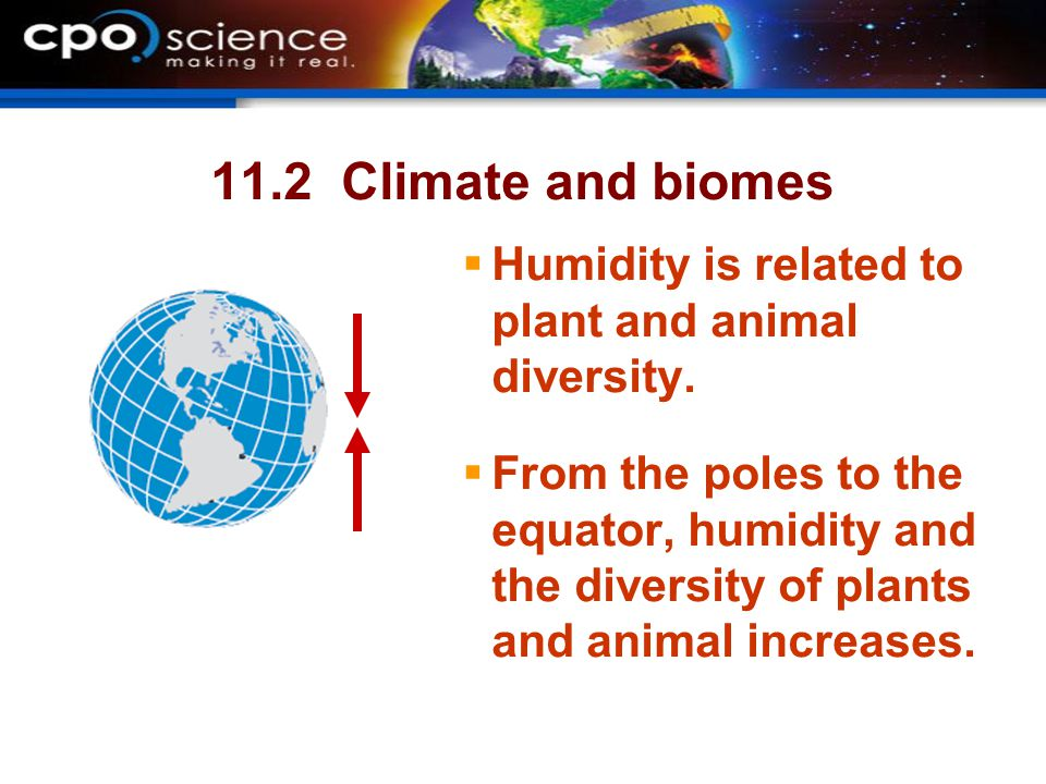 11.2 Climate and biomes  Humidity is related to plant and animal diversity.