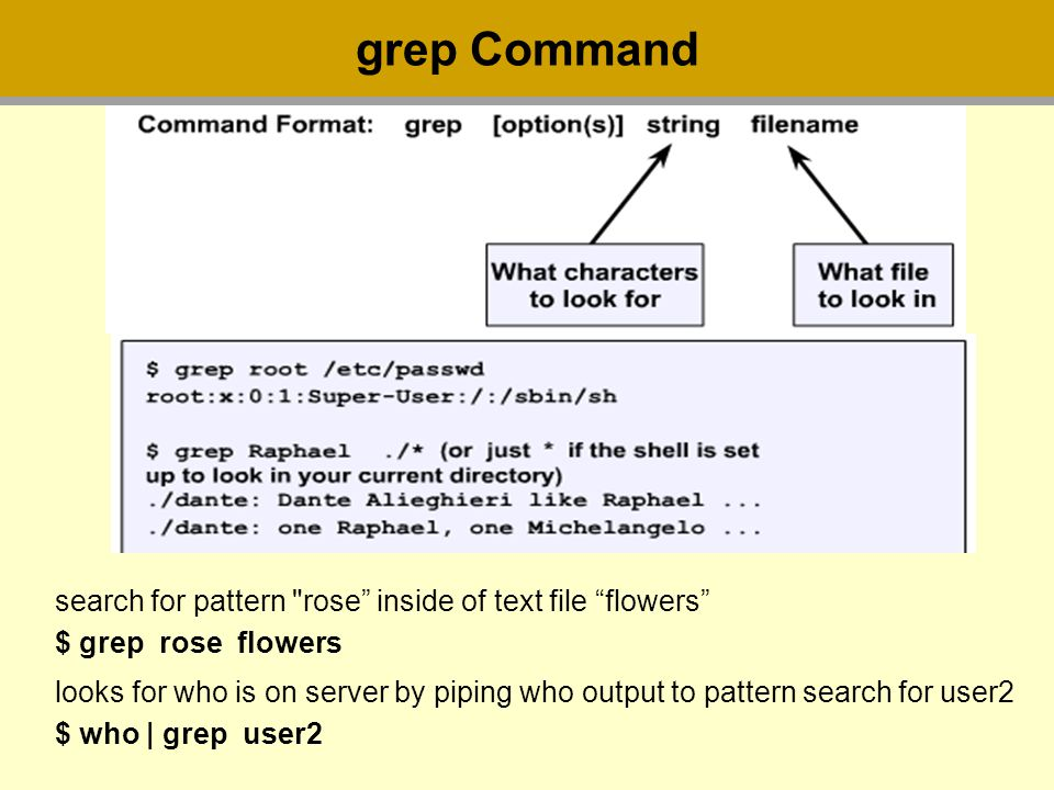 grep Command search for pattern rose inside of text file flowers $ grep rose flowers looks for who is on server by piping who output to pattern search for user2 $ who | grep user2