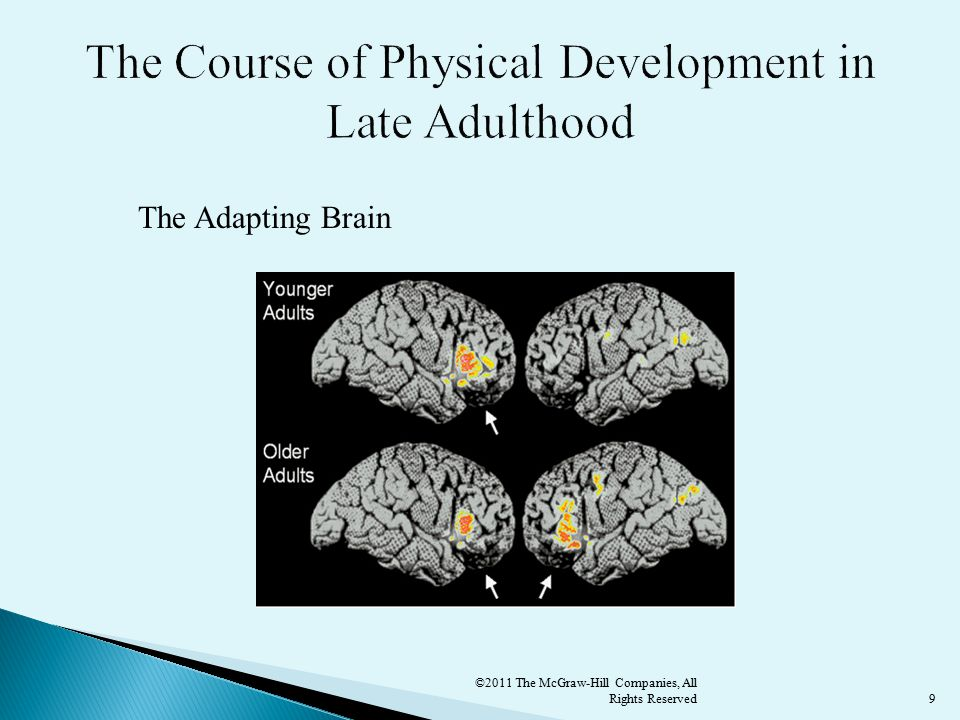 9 The Adapting Brain ©2011 The McGraw-Hill Companies, All Rights Reserved