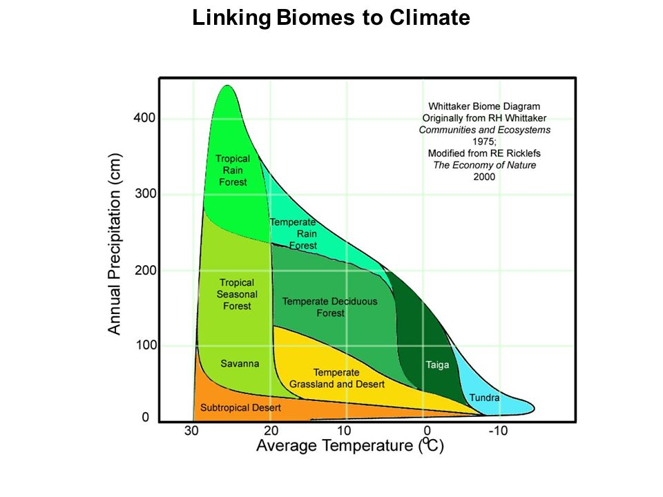 Linking Biomes to Climate