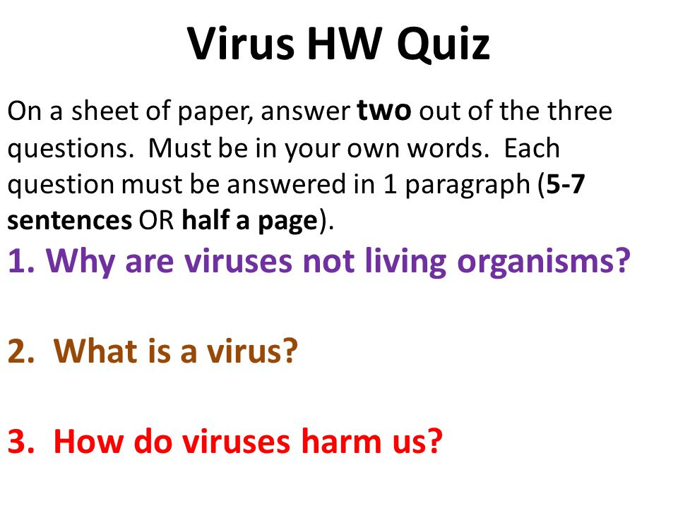 Happy Wednesday Bellwork Draw And Label The Viruses Above. 5 Virus Hw Quiz On A Sheet. Worksheet. 20 1 Viruses Worksheet Answer Key At Clickcart.co