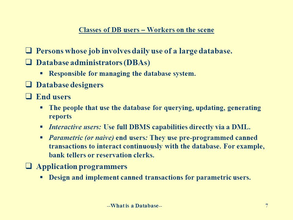 --What is a Database--7 Classes of DB users – Workers on the scene  Persons whose job involves daily use of a large database.