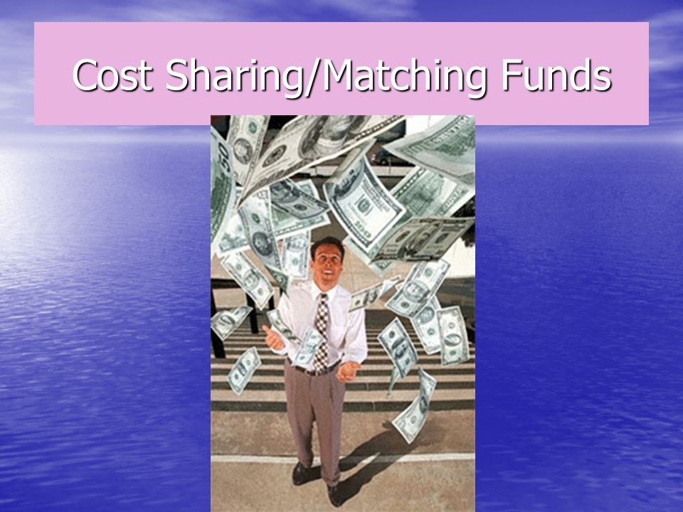 Cost Sharing/Matching Funds