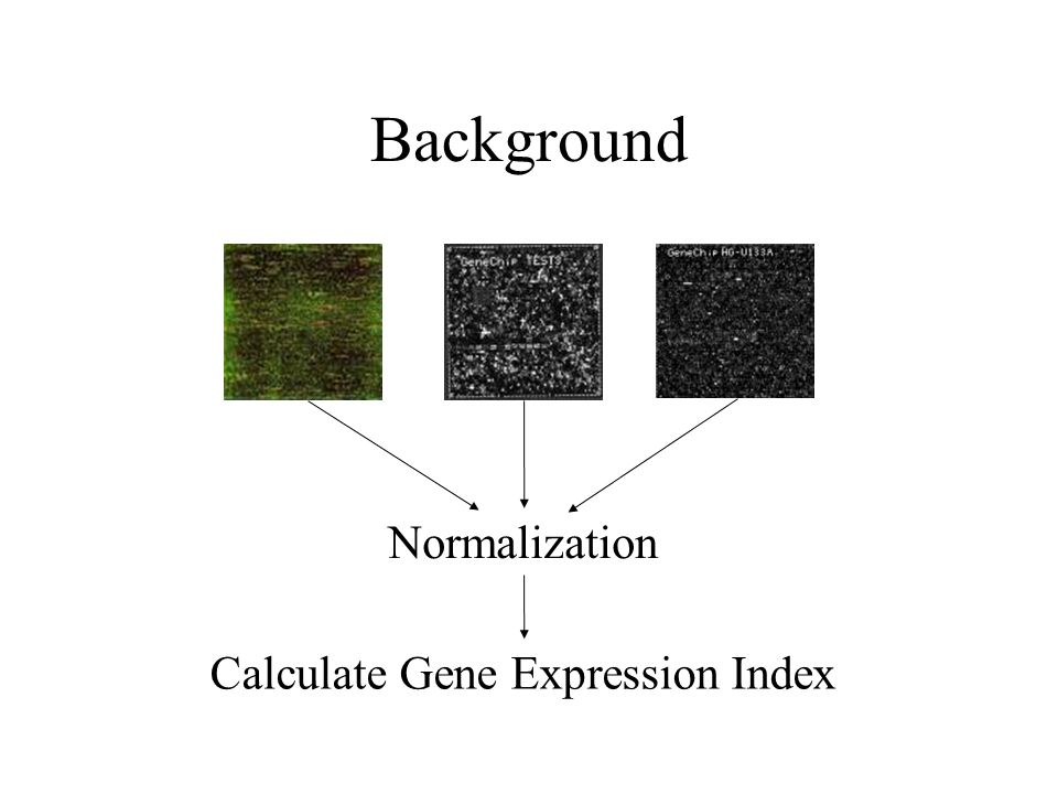 Background Normalization Calculate Gene Expression Index