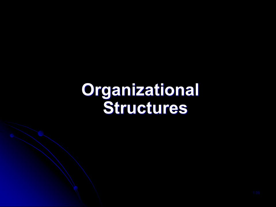 Organizational Structures 1-29