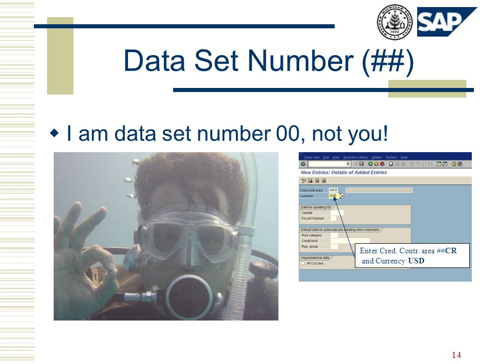 14 Data Set Number (##)  I am data set number 00, not you.