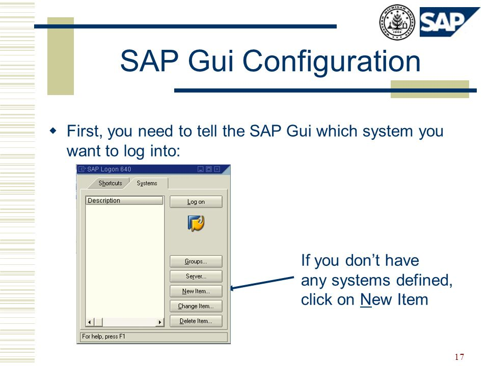 17 SAP Gui Configuration  First, you need to tell the SAP Gui which system you want to log into: If you don't have any systems defined, click on New Item