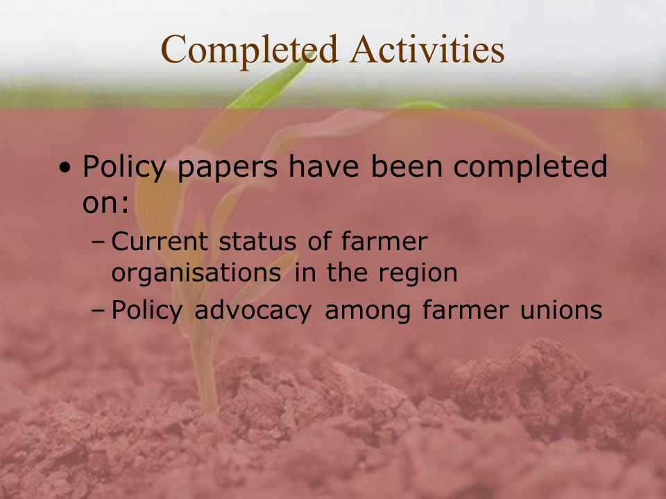 Completed Activities Policy papers have been completed on: –Current status of farmer organisations in the region –Policy advocacy among farmer unions