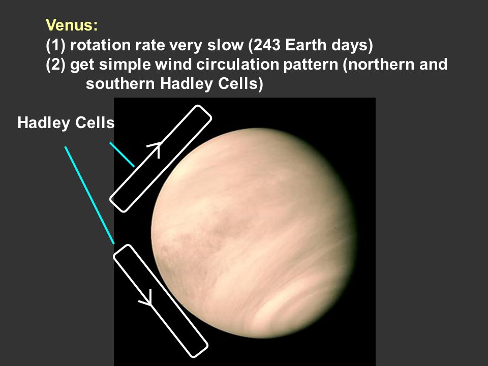Venus: (1) rotation rate very slow (243 Earth days) (2) get simple wind circulation pattern (northern and southern Hadley Cells) Hadley Cells