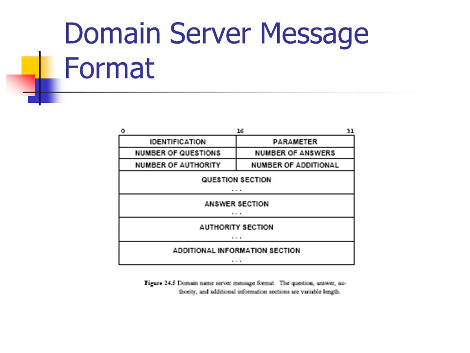 Domain Server Message Format