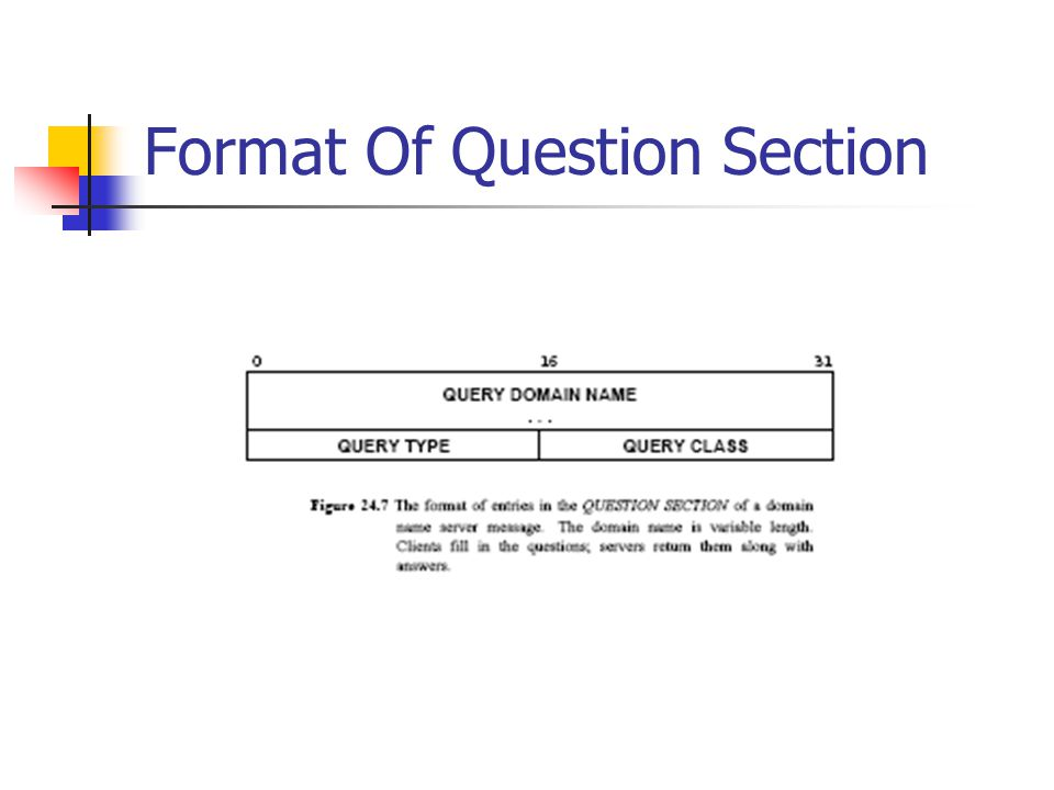 Format Of Question Section