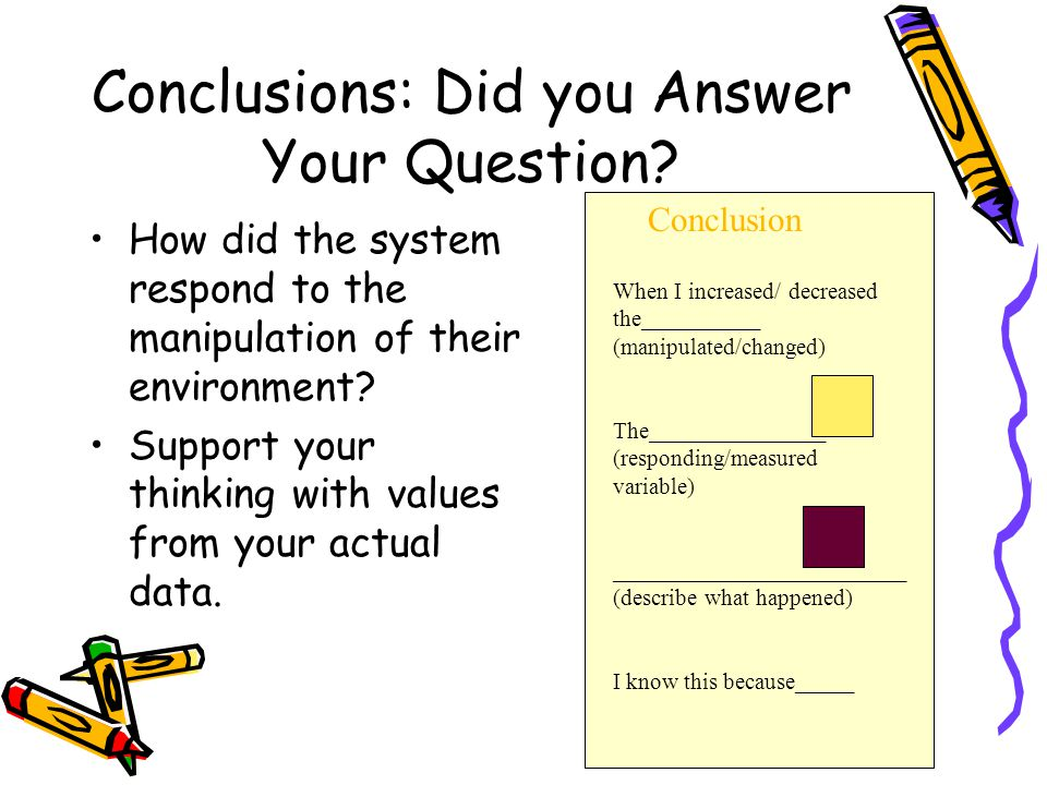 Conclusions: Did you Answer Your Question.