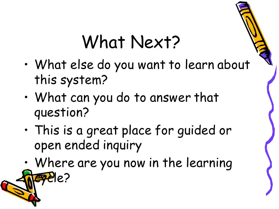 What Next. What else do you want to learn about this system.