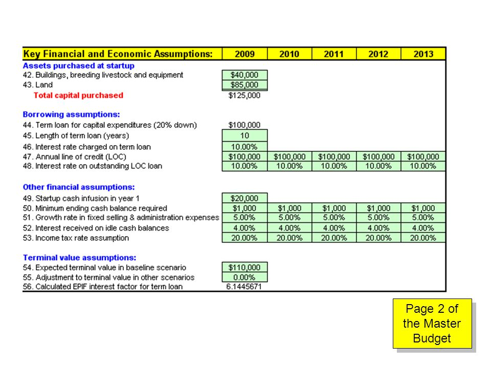 Page 2 of the Master Budget