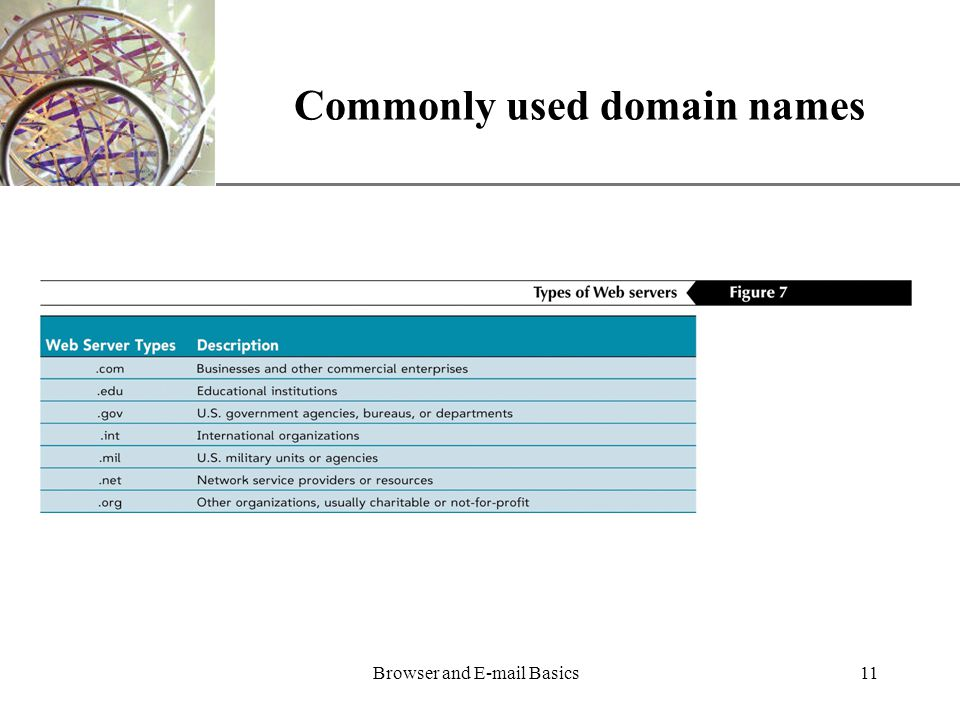 XP Browser and  Basics11 Commonly used domain names