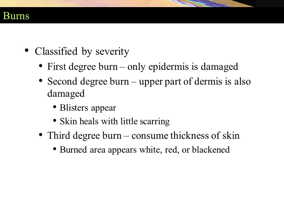 Burns Classified by severity First degree burn – only epidermis is damaged Second degree burn – upper part of dermis is also damaged Blisters appear Skin heals with little scarring Third degree burn – consume thickness of skin Burned area appears white, red, or blackened