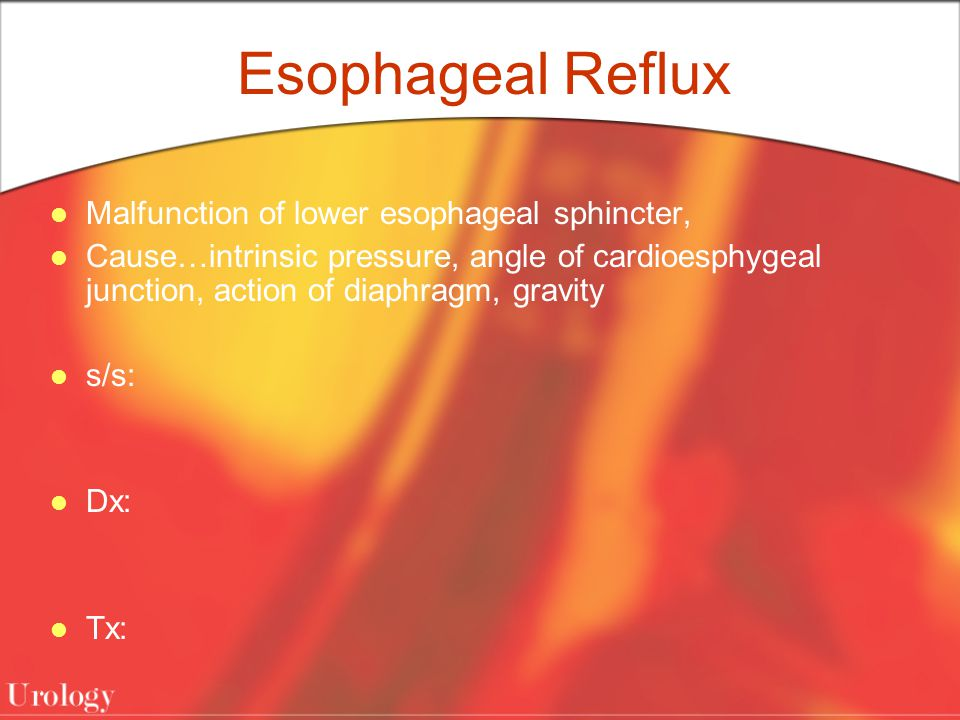 Esophageal Reflux Malfunction of lower esophageal sphincter, Cause…intrinsic pressure, angle of cardioesphygeal junction, action of diaphragm, gravity s/s: Dx: Tx: