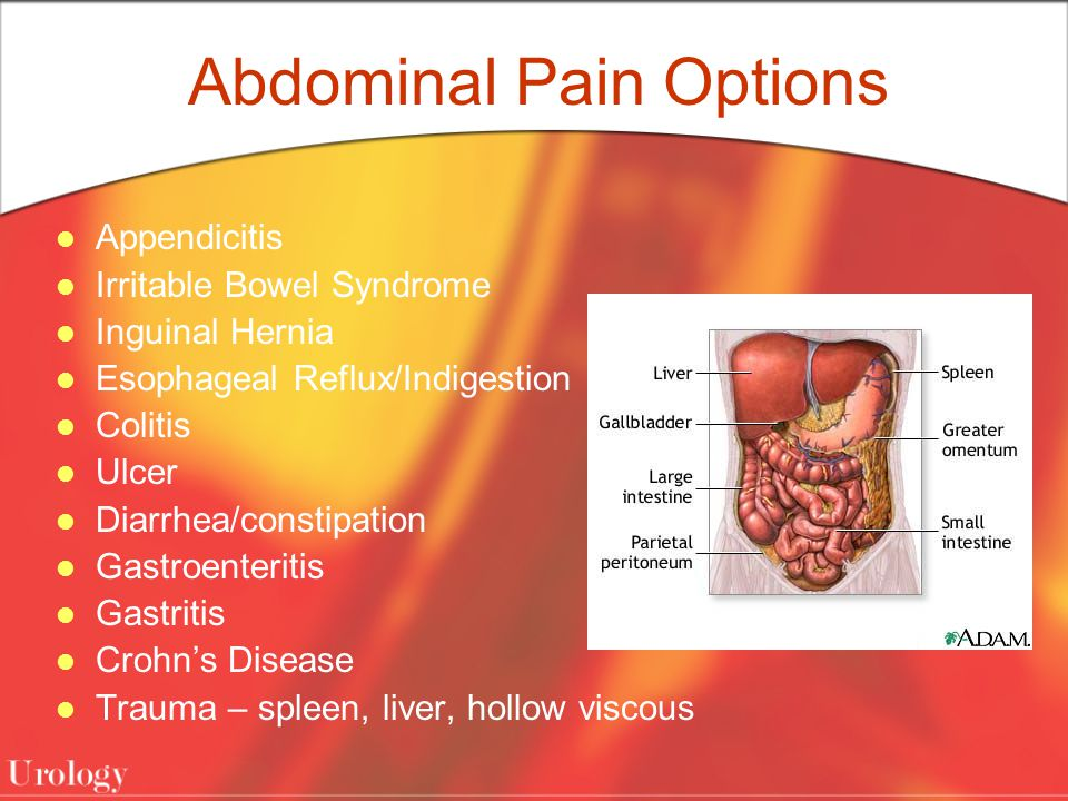 Abdominal Pain Options Appendicitis Irritable Bowel Syndrome Inguinal Hernia Esophageal Reflux/Indigestion Colitis Ulcer Diarrhea/constipation Gastroenteritis Gastritis Crohn's Disease Trauma – spleen, liver, hollow viscous