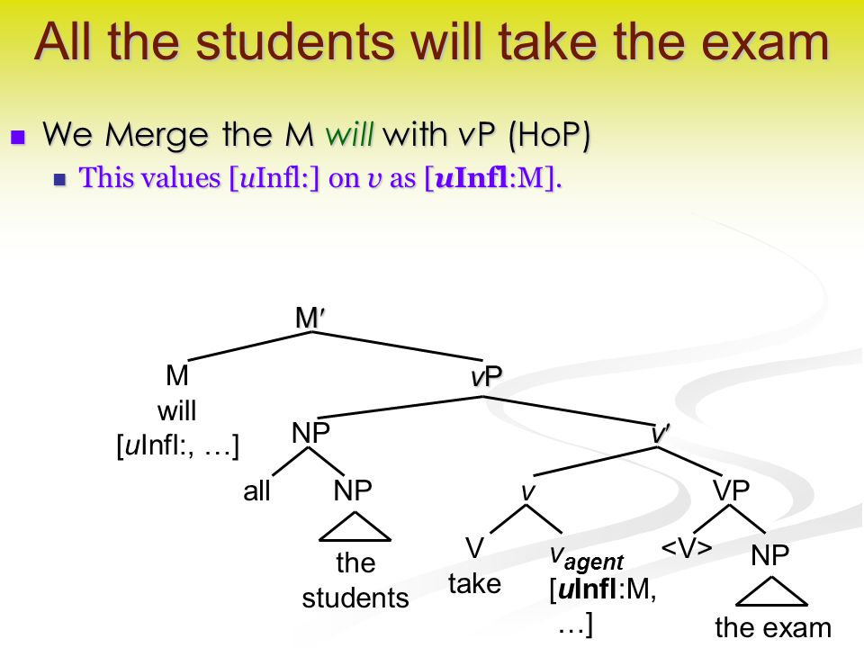 v All the students will take the exam We Merge the M will with vP (HoP) We Merge the M will with vP (HoP) This values [uInfl:] on v as [uInfl:M].