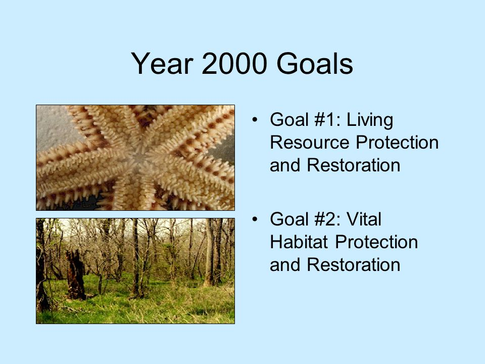 Year 2000 Goals Goal #1: Living Resource Protection and Restoration Goal #2: Vital Habitat Protection and Restoration