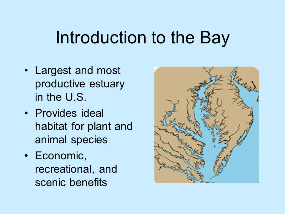 Introduction to the Bay Largest and most productive estuary in the U.S.