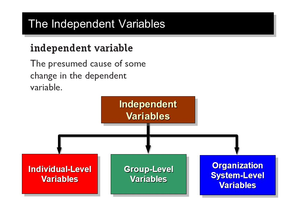 The Independent Variables Independent Variables Individual-Level Variables Organization System-Level Variables Group-Level Variables