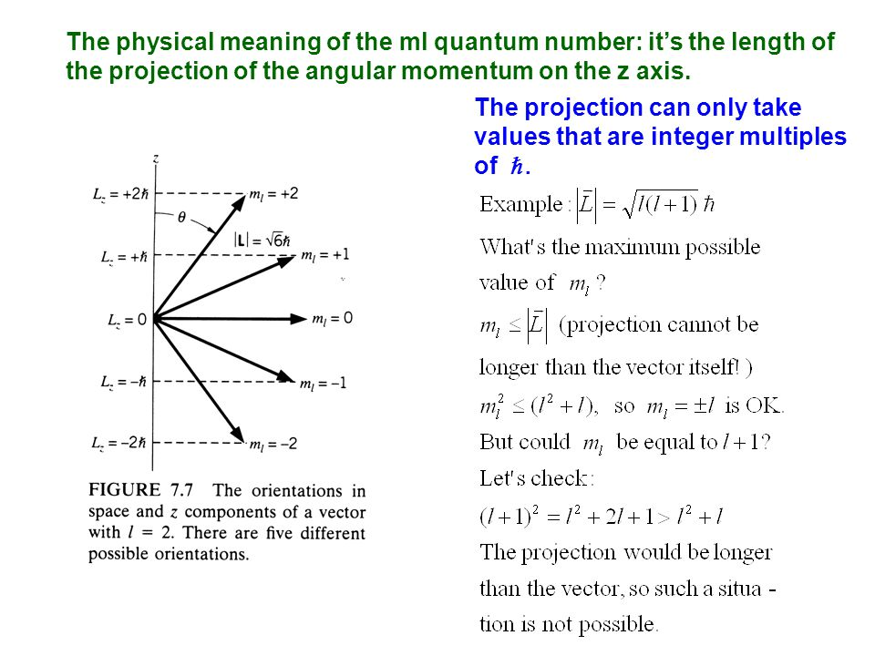 The physical meaning of the ml quantum number: it's the length of the projection of the angular momentum on the z axis.
