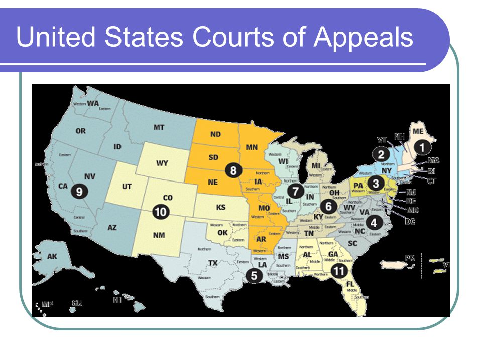 United States Courts of Appeals