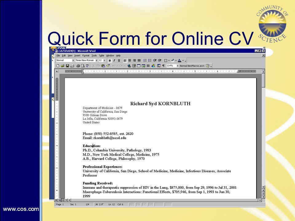 Quick Form for Online CV