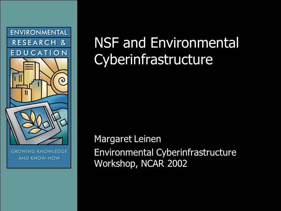 NSF and Environmental Cyberinfrastructure Margaret Leinen Environmental Cyberinfrastructure Workshop, NCAR 2002